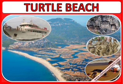 Marmaris to Turtle Beach