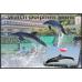 Dolphin Park